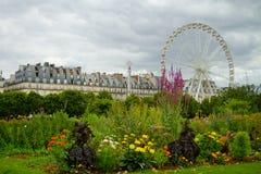 Tuileries gardens , Paris Royalty Free Stock Photos