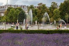 Tuileries trädgård Paris Frankrike arkivbild