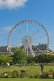 Tuileries trädgårdar, Paris Arkivfoton