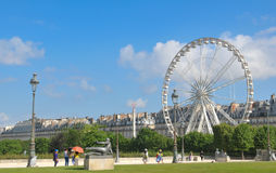 Tuileries trädgårdar, Paris Royaltyfria Bilder