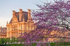 Tuileriestuin bij de Lente, Parijs, Frankrijk Royalty-vrije Stock Foto