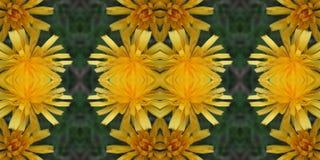 Tuiles de fleur Photos stock