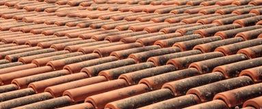 Tuiles de toit de Brown avec des anthracnoses, fond, texture Image libre de droits