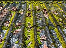 Tuiles de toit vieilles Image libre de droits