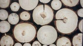 Tuiles en bois décoratives Photos stock