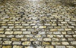 Tuiles humides de rue Photographie stock