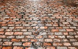Tuiles humides de rue Images libres de droits