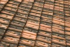 Tuiles modelées d'ardoise Images stock
