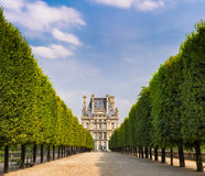 Tuilleries Garden tree-lined vista leading to Louvre Museum, Paris, France. Summer morning view of Tuilleries garden in Paris, France. Tree-lined path leads to Royalty Free Stock Photo