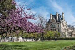 Tuillleries庭院,巴黎 库存照片