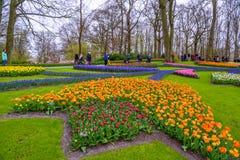 Tuilps和其他花在Keukenhof停放,利瑟,荷兰,荷兰 免版税库存照片