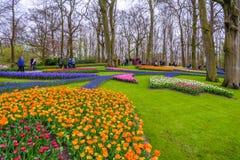 Tuilps ed altri fiori in Keukenhof parcheggiano, Lisse, Olanda, Paesi Bassi Immagine Stock Libera da Diritti