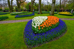 Tuilps and other flowers in Keukenhof park, Lisse, Holland, Netherlands. Stock Photography