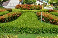 Tuin. Royalty-vrije Stock Afbeeldingen
