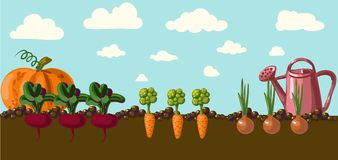 Tuin.  vector illustratie