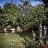 Tuin in Augustus Royalty-vrije Stock Afbeeldingen