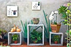 Tuin binnenshuis Stock Fotografie