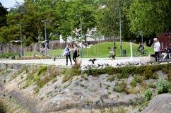 Tuin in de stad van Porto royalty-vrije stock fotografie