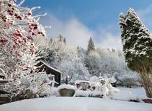 Tuin in de Winter Stock Afbeelding