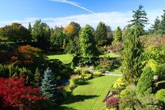 Tuin in de Zomer Stock Foto