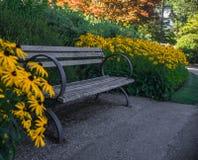 Tuin in de zomer Stock Afbeelding