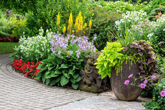 Tuin in de zomer Royalty-vrije Stock Foto's