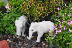 Tuin decoratief punt royalty-vrije stock foto's