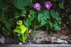 Tuin Decoratieve Voorwerpen Royalty-vrije Stock Foto's
