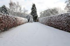 Tuin die in diepe sneeuw wordt behandeld Stock Fotografie
