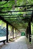 Tuin die door een wistariainstallatie wordt behandeld Stock Foto's