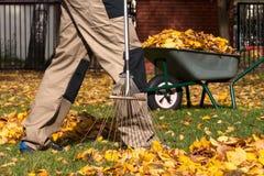 Tuin die vóór de herfst voorbereidingen treffen Stock Foto