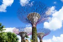 Tuin door de Baai Stock Afbeeldingen