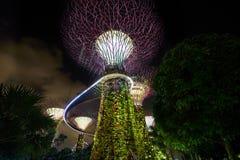 Tuin door de Baai Stock Afbeelding