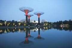 Tuin door de Baai, Singapore. Royalty-vrije Stock Foto's
