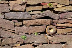 Tuin: droge steenmuur Stock Foto