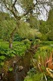 Tuin in Ierland stock afbeelding
