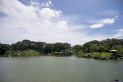 Tuin in Japan Stock Afbeeldingen