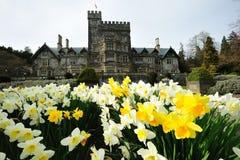 Tuin in kasteel Hatley royalty-vrije stock afbeeldingen