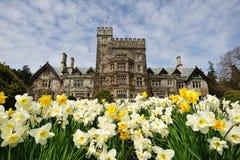 Tuin in kasteel Hatley stock fotografie