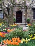 Tuin met de lentebloemen Royalty-vrije Stock Afbeelding
