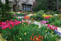 Tuin met de lentebloemen stock fotografie