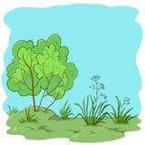 Tuin met een struik Stock Afbeelding
