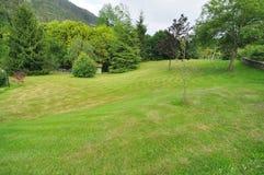 Tuin met gazon en bomen Stock Foto