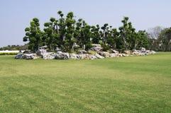 Tuin met gras op blauwe hemelachtergrond Royalty-vrije Stock Foto
