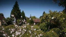 Tuin met huizen, installaties en bloemen in Normandië, Frankrijk stock video