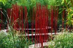 Tuin met rood riet Stock Fotografie