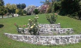 Tuin met rozen en andere bloemen stock afbeeldingen