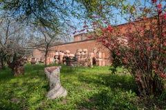 Tuin met terracottavazen in expositie Stock Fotografie