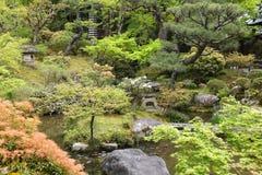 Tuin in Nara, Japan royalty-vrije stock foto