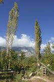 Tuin op de berg Stock Afbeelding